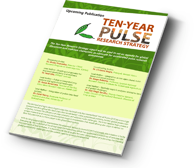 Upcoming Publication: Ten-year Pulse Research Strategy