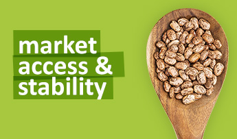Market Access & Stability